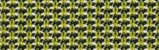 Giroflex Stoffindex N476 standard schwarz/grün